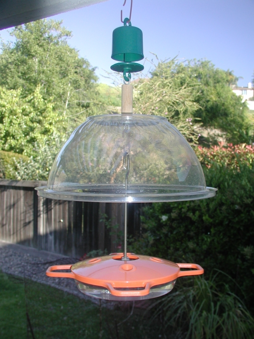 Oriole Feeder with rain shield